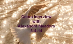 alexandra_meadors_cobra_interview_140304_video_snip_titled_240_1